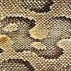 Materials: Snakeskin